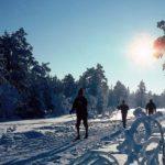 Лыжные прогулки зимой